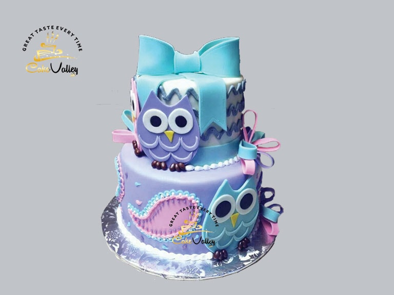 owl cakes for birthday Online cake Order and delivery in Lahore
